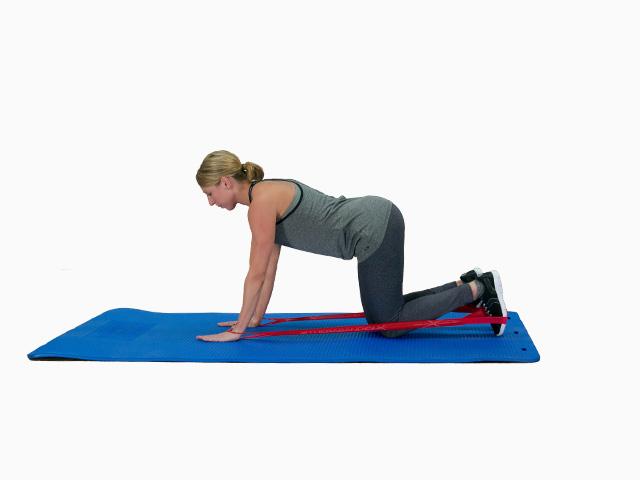 Frau in Zwischenstellung der Übung Vierfache Arm- und Beinstabilisierung für das TheraBand CLX