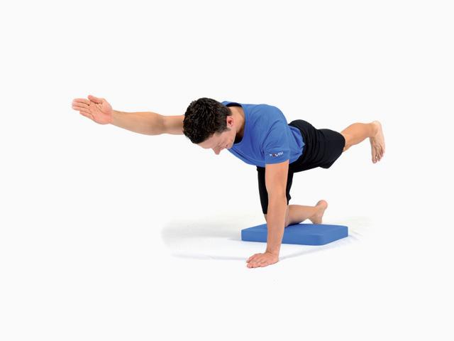 Mann in Ausgangsstellung der Übung Vierfüßler für den Balance- und Stabilitätstrainer